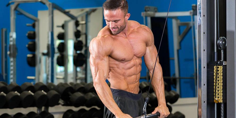 Destructor de grasa de 12 semanas programa de dieta y entrenamiento