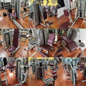 máquinas de musculación Adam sport y Precor de ocasión